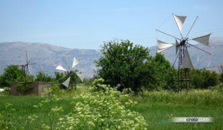 Lasithi Plateau Excursions from Agia Pelagia, Lygaria, Fodele