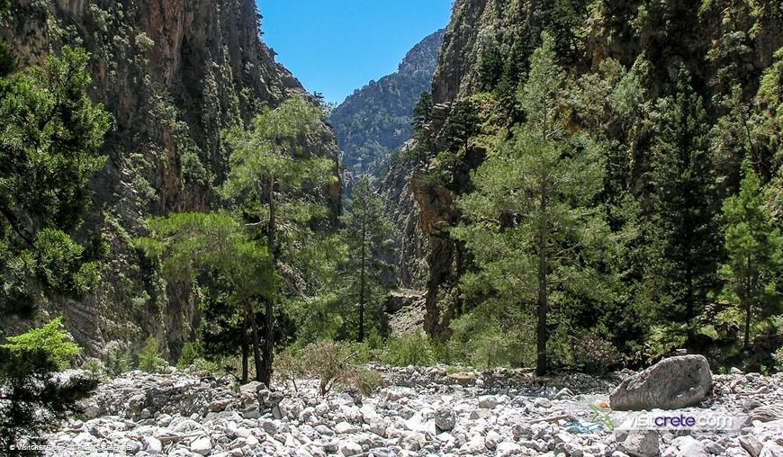 Samaria Gorge Excursion