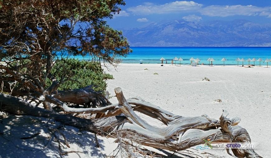 Chrissi Island Excursions form Agia Pelagia, Lygaria, Fodele