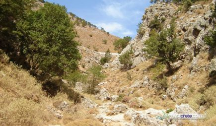 Imbros Gorge Excursions from Hersonissos, Malia, Heraklion