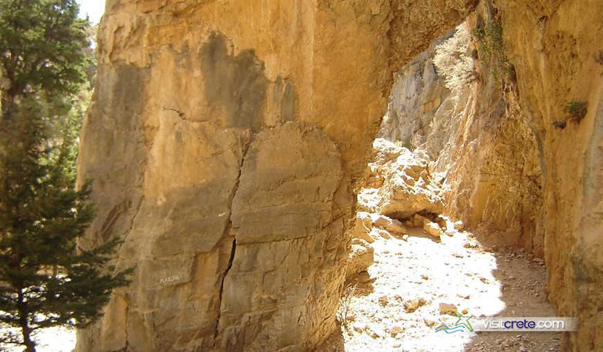 Imbros Gorge Excursion from Chania